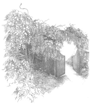 Drawing of Garden Gate