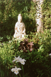 Image of Buddha statue in garden